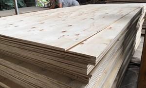 Xuất khẩu gỗ dán đối diện 2 vụ kiện gian lận thương mại