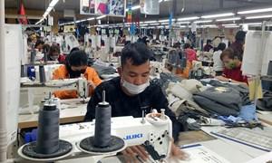 Dịch Covid-19 khiến thu nhập của nhiều hộ gia đình Việt Nam giảm tới 70%