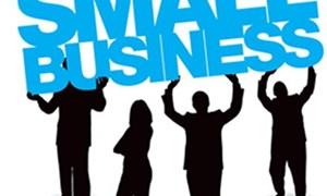 """Vì sao hộ kinh doanh cá thể """"né"""" lên doanh nghiệp?"""