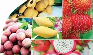 FTA mở ra điều kiện để hàng hóa Việt Nam đi vào thị trường cao cấp