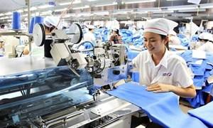 Hiệp định EVFTA - đòn bẩy cho các doanh nghiệp trong nước