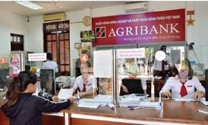 Agribank sẵn sàng cho