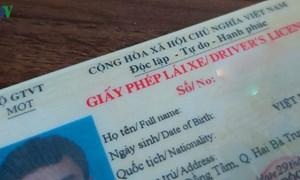 Không mang giấy phép lái xe bị xử phạt như thế nào?