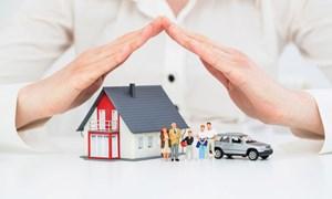 Tái khởi động thị trường bảo hiểm tài sản