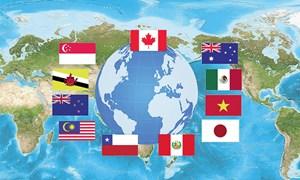 Vấn đề tiêu chuẩn về lao động trong Hiệp định Đối tác toàn diện và Tiến bộ xuyên Thái Bình Dương