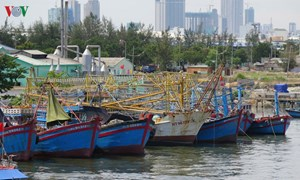 Tàu 67 nằm bờ, ngư dân nợ nần chồng chất