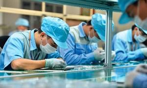Doanh nghiệp Việt vào chuỗi giá trị toàn cầu: Chưa có bước đột phá