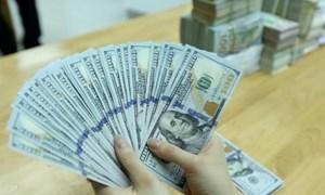 Sáng 16/8: Tỷ giá giữa đồng Việt Nam và đô la Mỹ ổn định