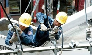 Cổ phần hóa doanh nghiệp nhà nước: Muốn đẩy nhanh phải vào cuộc đồng bộ