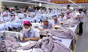 Tận dụng cơ hội từ Hiệp định Thương mại tự do Việt Nam - EU