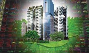 Cổ phiếu bất động sản: Tìm cơ hội với từng nhóm ngành