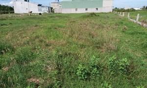Kiến nghị cho tồn tại 132 thửa đất từng là tang vật trong vụ án sai phạm đất đai tại TP Phan Thiết