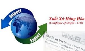Sau 1 tháng, hơn 7.200 bộ C/O xuất hàng Việt Nam đi 27 nước EU