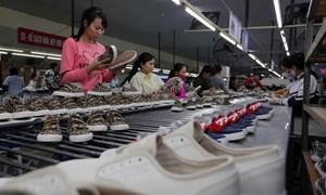 Xuất khẩu Việt Nam sang thị trường Séc và EU tiếp tục tăng