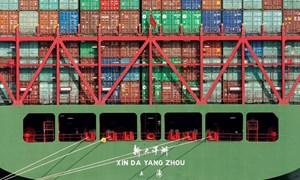 Hứng đòn trừng phạt của ông Trump, xuất khẩu Trung Quốc tụt dốc