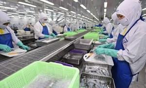 Kinh nghiệm xuất khẩu hàng Việt vào EU