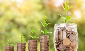 Chính sách tài chính hướng đến mô hình tăng trưởng xanh