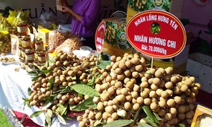 Giải pháp thu hút đầu tư vào lĩnh vực chế biến nông sản tỉnh Hưng Yên