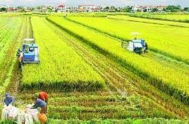 Tháo gỡ kịp thời các chính sách góp phần xây dựng nền nông nghiệp thịnh vượng