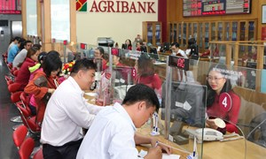 Agribank tăng tốc và bứt phá