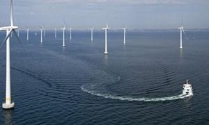 Tập đoàn Anh muốn đầu tư dự án điện gió 12 tỷ USD tại Bình Thuận