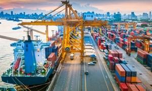 Kinh tế trong nước tiếp tục là động lực cho sự tăng trưởng