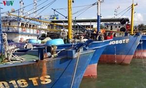 """Tàu cá nằm bờ: Ngân hàng và ngư dân cùng """"khóc"""""""