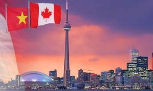 Canada - cánh cửa lớn đưa hàng Việt vào Bắc Mỹ