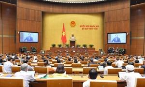 Xóa 'thẻ vàng' từ EC, thủy sản Việt Nam 'hiên ngang' xuất khẩu