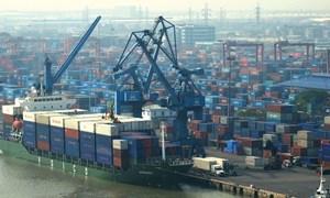 Nhiều doanh nghiệp cảng biển lợi nhuận không đạt kỳ vọng