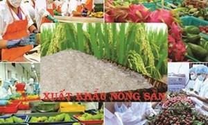 Vì sao nhiều hàng Việt Nam xuất khẩu bị