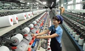 TP. Hồ Chí Minh tăng cường quản lý nguồn thu, kiểm soát chi