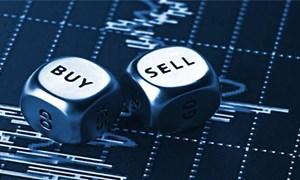 Thị trường đang ủng hộ mua vào