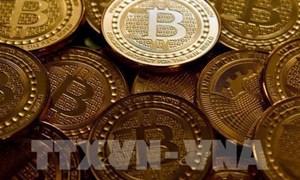 Đồng bitcoin tiếp tục tuột dốc