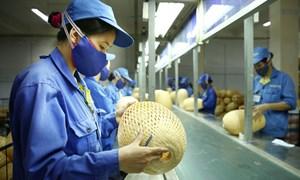 Nhân tố ảnh hưởng tới sự tham gia của doanh nghiệp nhỏ và vừa Việt Nam trong chuỗi giá trị toàn cầu