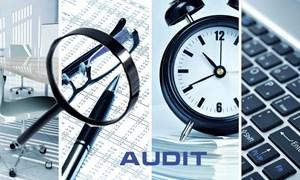 Hoàn thiện Hệ thống mẫu biểu hồ sơ kiểm toán phải đảm bảo tiến độ, chất lượng