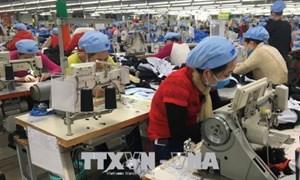 Xuất khẩu dệt may: Mục tiêu 40 tỷ USD liệu có chạm tới?