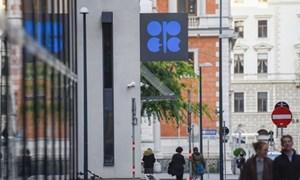 OPEC cân nhắc khả năng cắt giảm thêm sản lượng dầu mỏ