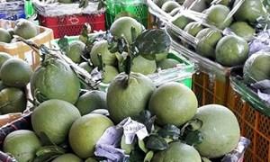 Tăng chậm lại, xuất khẩu rau quả vẫn hướng tới 10 tỷ USD
