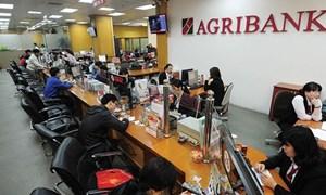 Quản trị rủi ro tín dụng theo Hiệp ước Basel II tại Agribank