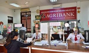 Giải pháp phát triển dịch vụ, nâng cao năng lực cạnh tranh của Agribank