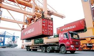 Ra mắt Trung tâm Vận tải container
