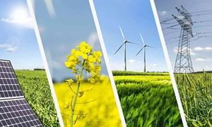 Bàn về đầu tư vào năng lượng tái tạo góp phần phát triển kinh tế bền vững