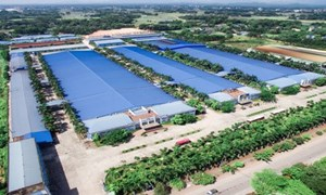 Nhu cầu bất động sản công nghiệp tăng cao