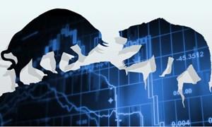 Thị trường chứng khoán 2018 - Cơ hội trước, cạm bẫy sau