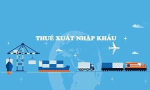 Thuế xuất khẩu, thuế nhập khẩu ở Việt Nam: Thực tiễn và giải pháp
