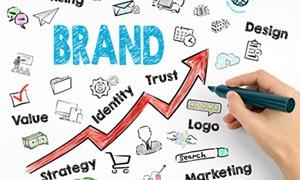 Xác lập quyền sở hữu và quản trị nhãn hiệu  của các doanh nghiệp Việt Nam