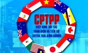 CPTPP đã chính thức có hiệu lực