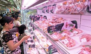 Doanh nghiệp đồng hành cùng Thủ đô bình ổn giá thịt lợn