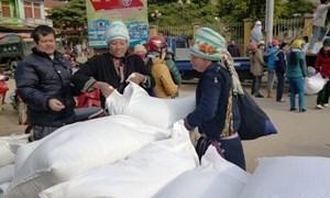 Xuất cấp gạo hỗ trợ kịp thời nhân dân vùng khó khăn nhân dịp Tết